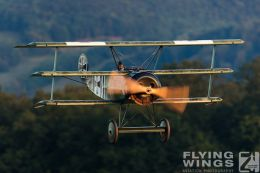 http://www.flying-wings.com/plugins/content/sige/plugin_sige/showthumb.php?img=/images/airshows/19_Hahnweide/Carlson_6/Hahnweide19_Fokker_DrI-9689_Zeitler.jpg&width=260&height=300&quality=80&ratio=1&crop=0&crop_factor=50&thumbdetail=0