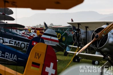 http://www.flying-wings.com/plugins/content/sige/plugin_sige/showthumb.php?img=/images/airshows/19_Hahnweide/Flightline_4/Hahnweide19_Flightline_Morgen-8828_Zeitler.jpg&width=396&height=300&quality=80&ratio=1&crop=0&crop_factor=50&thumbdetail=0