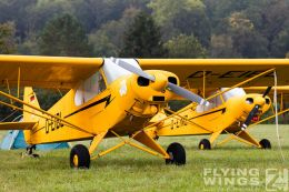 http://www.flying-wings.com/plugins/content/sige/plugin_sige/showthumb.php?img=/images/airshows/19_Hahnweide/Oshkosh_6/Hahnweide19_Flightline_Morgen-8859_Zeitler.jpg&width=260&height=300&quality=80&ratio=1&crop=0&crop_factor=50&thumbdetail=0