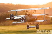 http://www.flying-wings.com/plugins/content/sige/plugin_sige/showthumb.php?img=/images/airshows/19_Hahnweide/gallery/Hahnweide19_Fokker_DrI-9663_Zeitler.jpg&width=180&height=200&quality=80&ratio=1&crop=0&crop_factor=50&thumbdetail=0