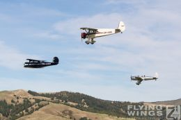 http://www.flying-wings.com/plugins/content/sige/plugin_sige/showthumb.php?img=/images/airshows/19_Omaka/13/Omaka_2019_1930s-1145_Zeitler.jpg&width=260&height=300&quality=80&ratio=1&crop=0&crop_factor=50&thumbdetail=0