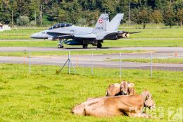 http://www.flying-wings.com/plugins/content/sige/plugin_sige/showthumb.php?img=/images/airshows/20_Meiringen/1/_scenery-8806_Zeitler.jpg&width=260&height=300&quality=80&ratio=1&crop=0&crop_factor=50&thumbdetail=0