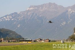 http://www.flying-wings.com/plugins/content/sige/plugin_sige/showthumb.php?img=/images/airshows/20_Meiringen/6/Meiringen_Tiger-9868_Zeitler.jpg&width=260&height=300&quality=80&ratio=1&crop=0&crop_factor=50&thumbdetail=0